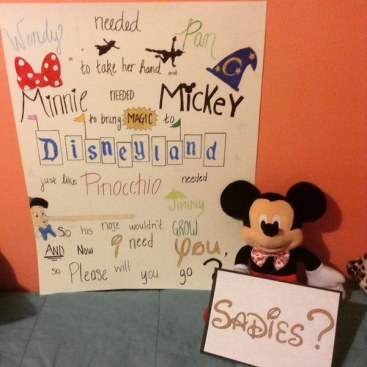 24-sadies-prom-proposals